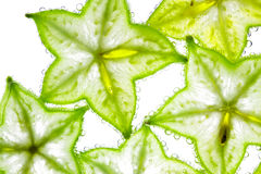 Carambola  in the water Stock Photography