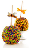 Caramel apple Stock Photography