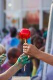 Caramel apple. Hands holding a caramel apple Stock Photo
