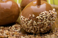 Caramel apples. Delicious caramel apples with nuts Royalty Free Stock Image