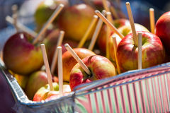 Caramel apples Royalty Free Stock Photography