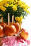 Caramel apples and mum flowers, delicious fall festival or party food, autumn treat Stock Photo