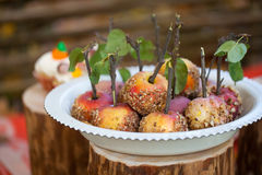 Caramel apples with nuts. On the stumps Stock Photos
