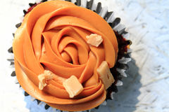 Caramel cupcake isolated Stock Images