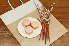 Caramel macarons on white plate and pussy willow bunch Stock Photos