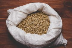 Caramel malt in a bag on a wooden background. Craft beer brewing. From grain barley pale malt in process. Ale or lager from pilsner malt Royalty Free Stock Photography