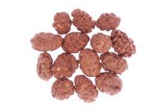 Caramelized peanuts isolated on white Stock Image
