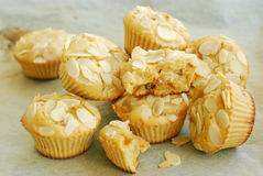 Pear muffins Stock Photo
