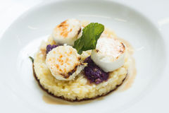 Caramelized sugar on mozzarella cheese with risotto Stock Images