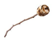 Caramella gommosa e molle arrostita su un bastone Fotografia Stock Libera da Diritti