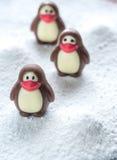 Caramelle di cioccolato sotto forma dei pinguini Immagini Stock