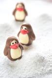 Caramelle di cioccolato sotto forma dei pinguini Immagine Stock