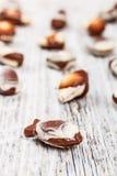 Cioccolato svizzero Fotografie Stock Libere da Diritti