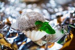 Caramelo blanco sabroso bajo la forma de bola con el polvo de Cocos con las hojas de menta Un fondo del alivio de una hoja Remien foto de archivo