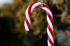 Caramelo Cane Christmas Ornament Decorating un árbol al aire libre fotos de archivo libres de regalías