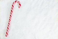 Caramelo Cane On Snowy Background Fotografía de archivo libre de regalías