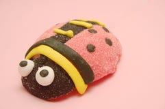 Caramelo del Ladybug Imagen de archivo libre de regalías