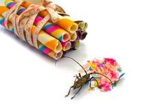 Caramelo e insecto coloridos Fotografía de archivo