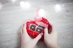 Caramelo vegetariano Imágenes de archivo libres de regalías