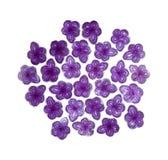 Caramelo violeta de Madrid Imagen de archivo libre de regalías