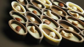 Caramelos de chocolate clasificados en un primer giratorio de la placa almacen de video
