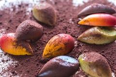 Caramelos de chocolate de lujo con el polvo de cacao imagen de archivo