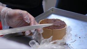 Caramelos de chocolate hechos a mano de la preparación, cierre para arriba Fábrica de la confitería Producción de confitería past almacen de video
