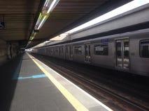 Carandiru stacja Zdjęcie Royalty Free