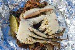 Caranguejo azul cozinhado delicacy foto de stock