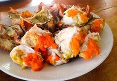 Caranguejo cozinhado Foto de Stock