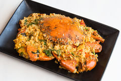 Caranguejo-fritado com pó de caril Imagem de Stock Royalty Free