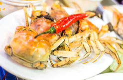 Caranguejo grande delicioso Foto de Stock