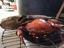 Caranguejo vietnamiano do BBQ do serrata de Scylla do caranguejo da lama ou caranguejo grelhado Foto de Stock