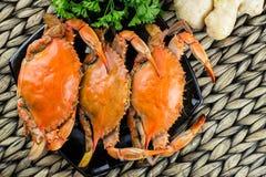 Caranguejos azuis de Maryland Caranguejos cozinhados Fest do caranguejo imagem de stock royalty free