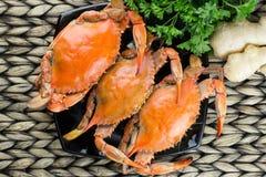 Caranguejos cozinhados com especiarias Caranguejos azuis de Maryland imagem de stock royalty free