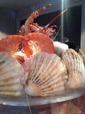 Caranguejos e marisco do camarão fotos de stock royalty free