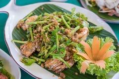 Caranguejos fritados de Macio-SHELL com alho e salada fotos de stock royalty free
