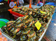 Caranguejos no mercado Tailândia da manhã Fotos de Stock