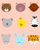 Caras animales Imagenes de archivo