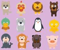 Caras animales divertidas Imagen de archivo libre de regalías