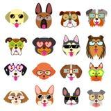 Caras bonitos dos cães com os vidros ajustados ilustração stock