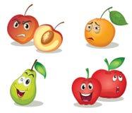 Caras de la fruta Imagenes de archivo