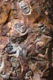 Caras de la roca Imagen de archivo