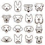 Caras de los perros con el sistema del bigote Imágenes de archivo libres de regalías