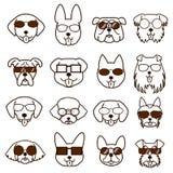 Caras de los perros con los vidrios fijados Fotos de archivo