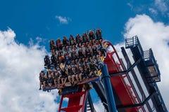 Caras emocionadas de la gente enyoing un paseo del roller coaster de Sheikra en el parque temático 19 de los jardines de Busch imágenes de archivo libres de regalías