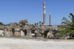 Caratagina i Tunisien Arkivbilder