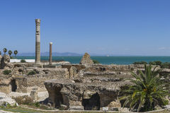 Caratagina in Tunesien Stockbilder