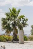 Caratagina in Tunisia Fotografie Stock
