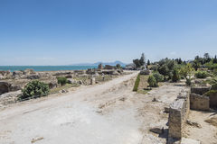 Caratagina in Tunisia. Ruins of Cartagina - monument in Tunisia. Thermes of Antonin stock image